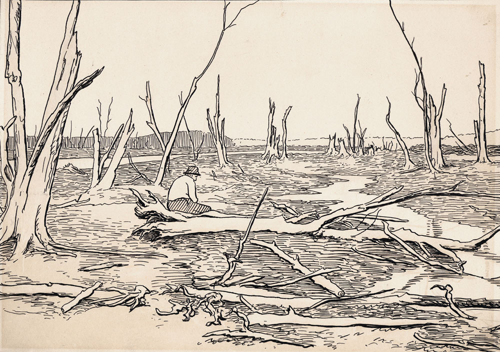 Drowned Lands of Raquette ca. 1890